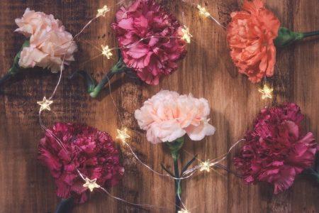 お花 写真